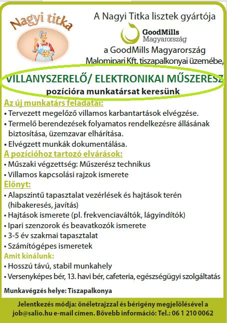 ELEKTRONIKAI MŰSZERÉSZ (Tiszapalkonya)