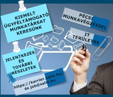 IT Business Analyst Rendszerszervező
