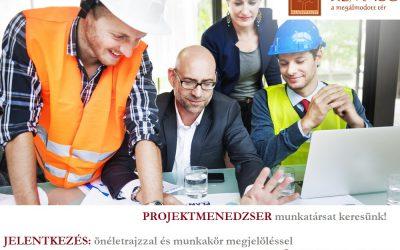 Projektmenedzser (faipari mérnök)
